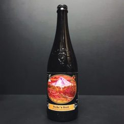Logsdon Farmhouse Ales Peche 'n Brett Oak Aged Ale brewed with peaches USA