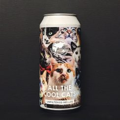Lost & Grounded All The Cool Cats Unfiltered Helles Bristol vegan