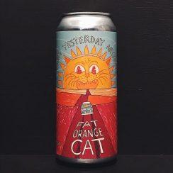 Fat Orange Cat Its Not Yesterday Anymore NEIPA USA vegan